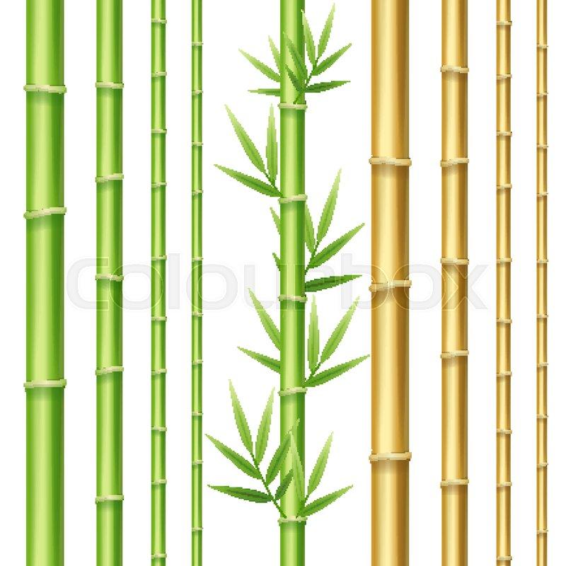 Realistic 3d Detailed Bamboo Shoots Set Eco Decorative Element