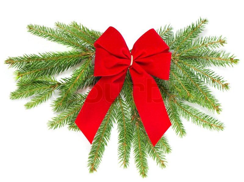 Christmas Tree Decorations Red Ribbon : Christmas tree branch with red ribbon decoration