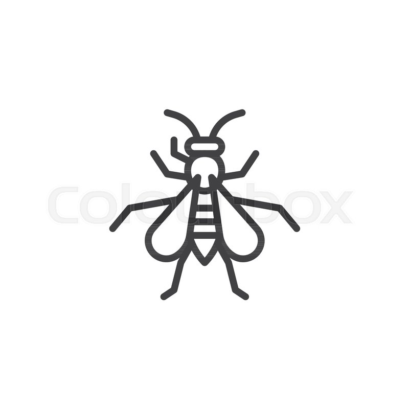 wasp insect line icon outline vector sign linear style pictogram