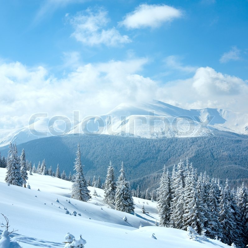 Stock image of 'Winter rime and snow covered landscape with Goverla Mount view Carpathian Mountains, Ukraine Two shots stitch image'