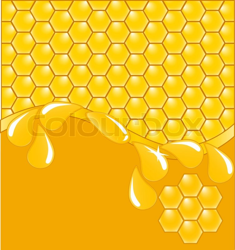 Vector illustration of a honeycomb pattern   Stock Vector ...