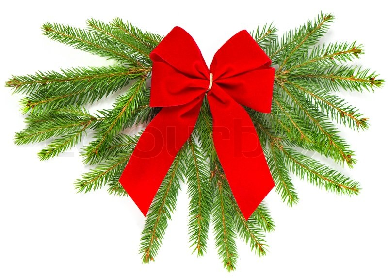 Christmas tree branch with red ribbon christmas decoration | Stock ...