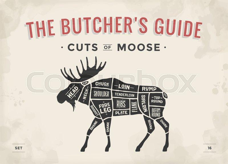 cut of meat set. poster butcher diagram, scheme - moose ... diagram of price elasticity of demand diagram of moose cuts