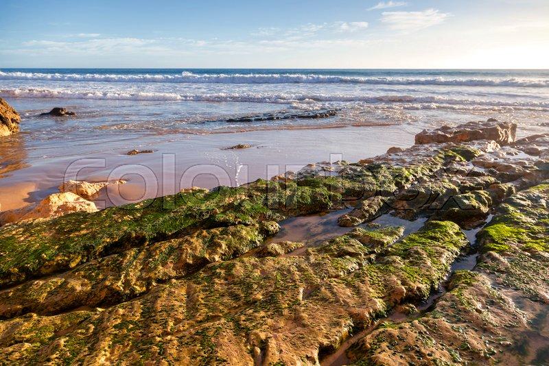Stone coast covered with green moss, Atlantic coast, Algarve, Portugal. Stunning beautiful landscape, stock photo