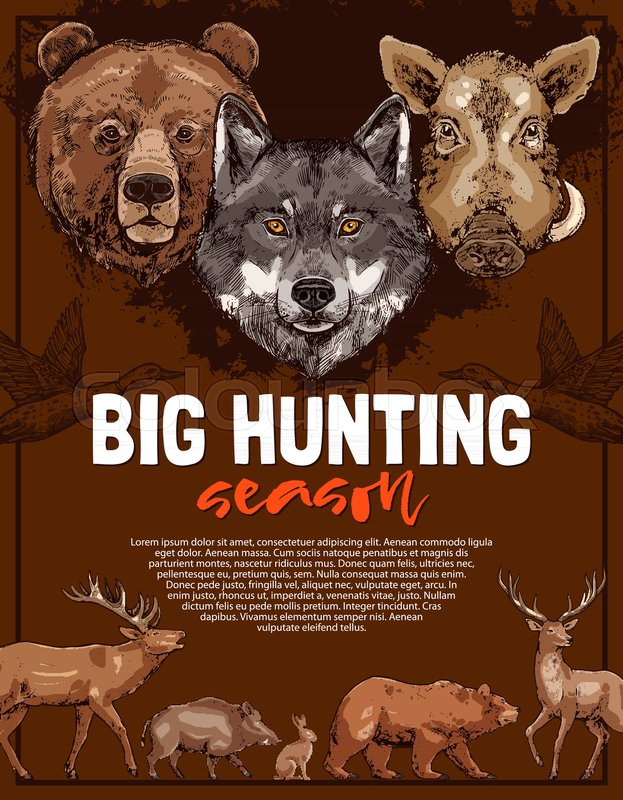 wild animal poster for open hunting season template deer bear and