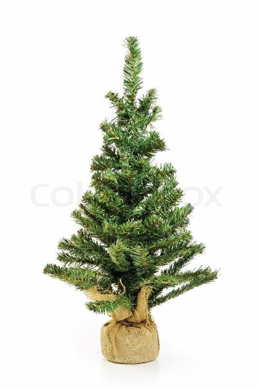 bare weihnachtsbaum ohne dekoration isoliert auf wei. Black Bedroom Furniture Sets. Home Design Ideas