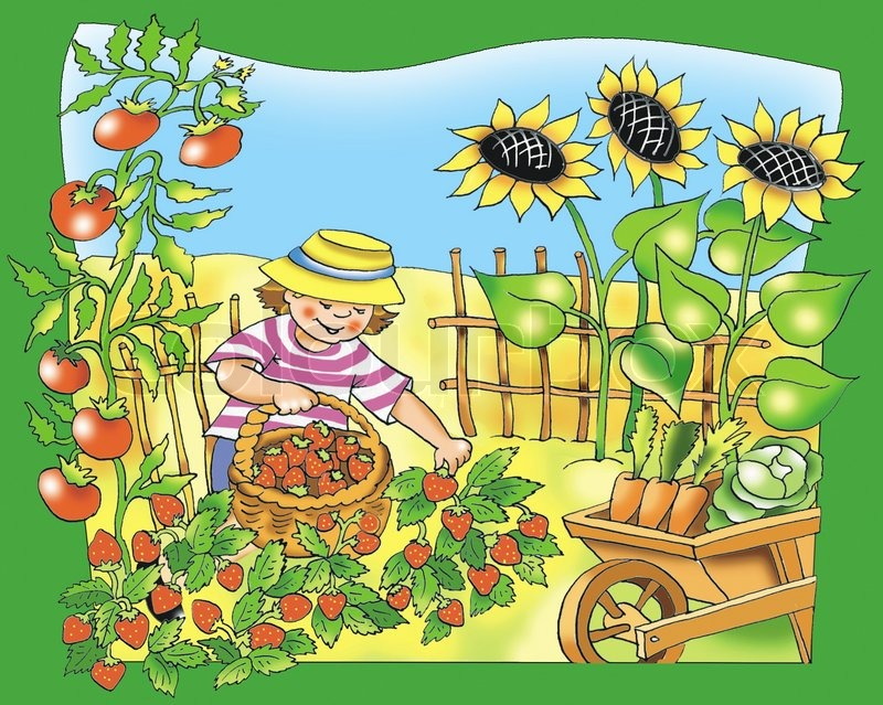 Little young farmer   Stock Photo   Colourbox