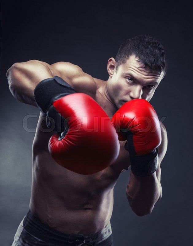 картинки бокс модуляр кто