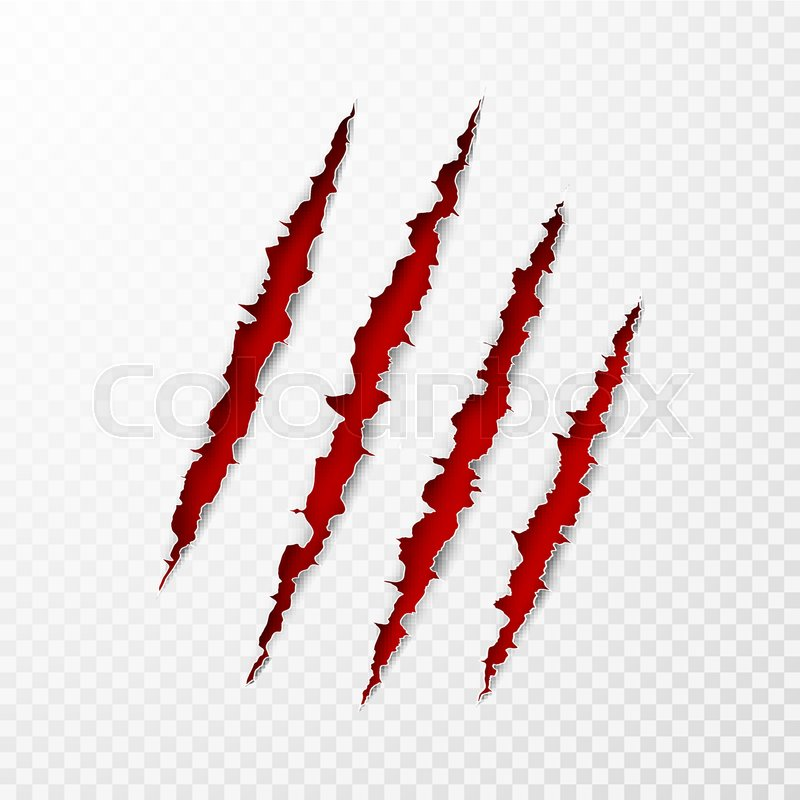 Wild Animal Claws Scratch Texture With Red Background Torn Paper Edge Isolated Vector Illustration