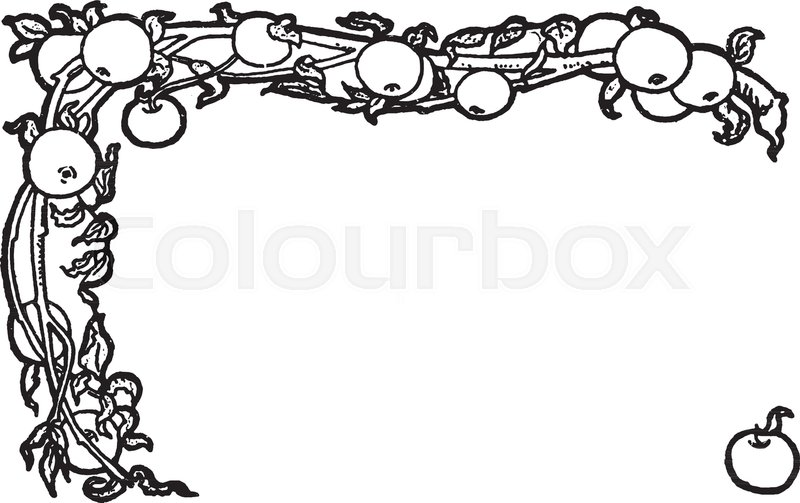 apple border is a decorative border it is a vines and apples rh colourbox com decorative border vector png decorative border vector art