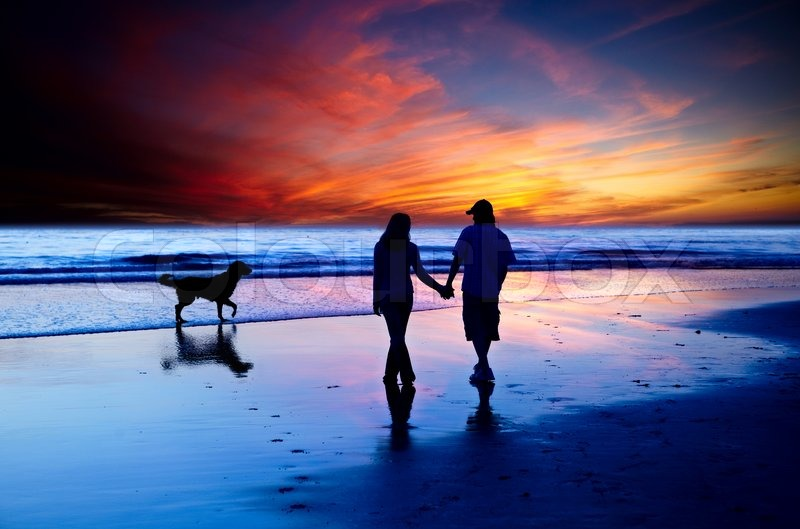 Stock image of 'Young Couple In Love Walking On The Beach With Golden Retriever Dog At Dusk With Brilliant Glowing Orange and Blue Sunset'