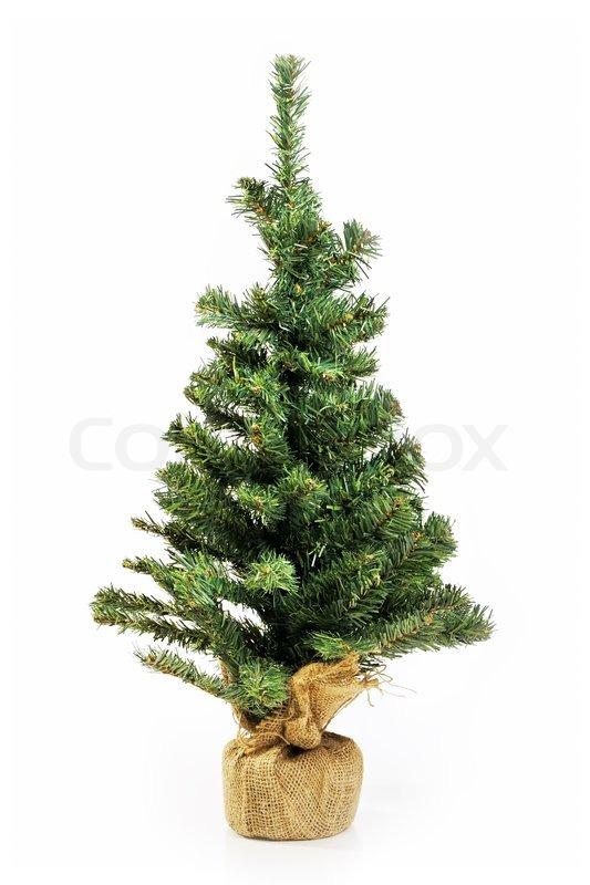 bare weihnachtsbaum ohne dekoration stockfoto. Black Bedroom Furniture Sets. Home Design Ideas