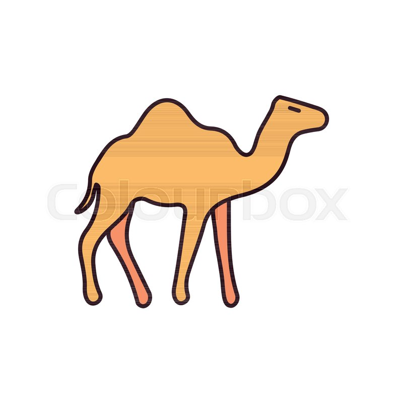 Egyptian camel icon in cartoon style      | Stock vector | Colourbox