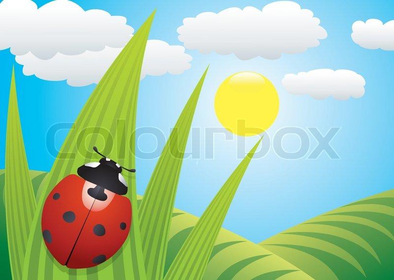Vector ladybird on the leaf stock colourbox