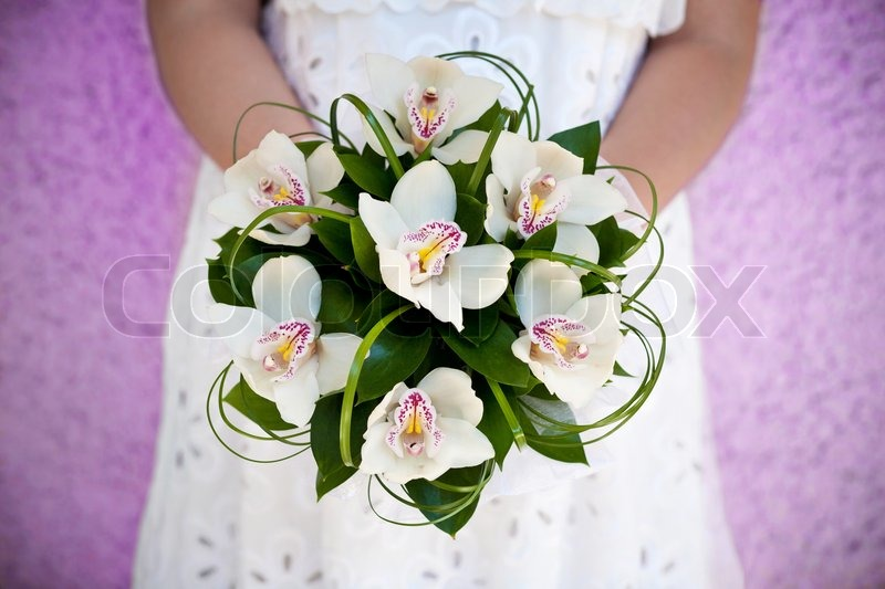 Bridal Bouquet Of Orchids In The The Stock Photo Colourbox