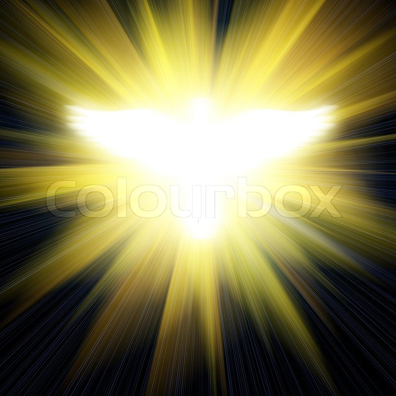 shining dove against golden rays stock photo colourbox