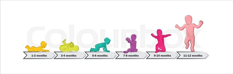 baby development stages milestones first one year timeline of child milestones of the first year vector illustration vector