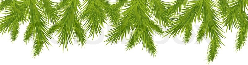 Branch Of Christmas Tree, Isolated On White Background, Vector ...