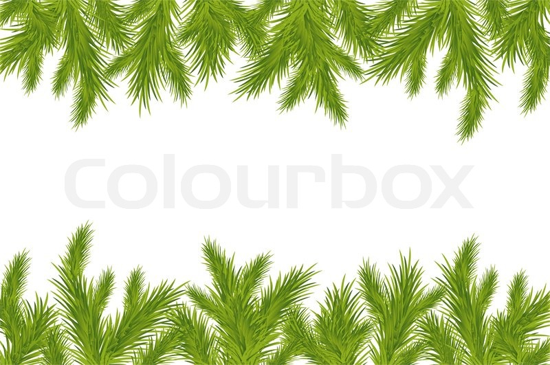 Christmas Branch Vector.Branch Of Christmas Tree Isolated On Stock Vector