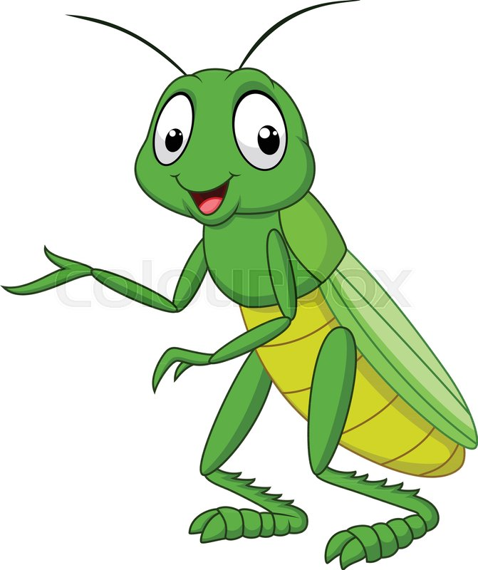 Cartoon grasshopper isolated on white ...   Stock Vector ...