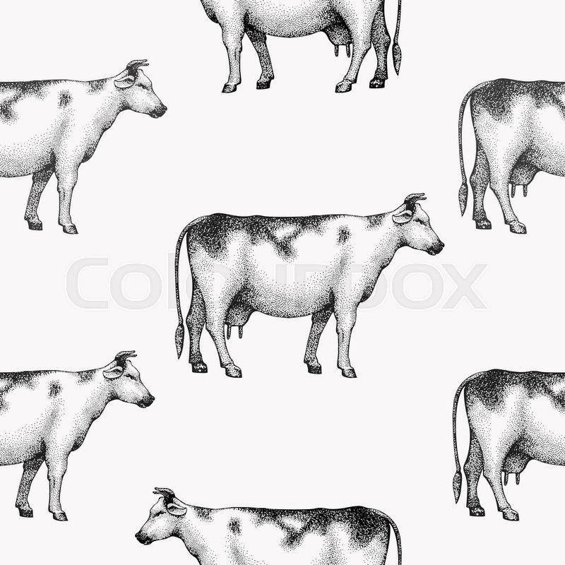 Seamless Farm Vector Pattern Graphical Cow Silhouette Hand Drawn Vintage Illustrations Retro Animals Background