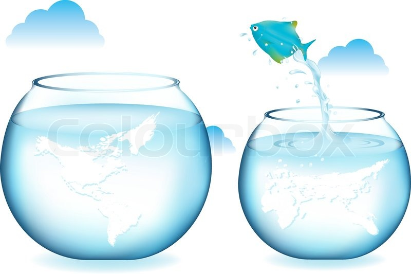 Blue Fish Jumping To Other Globe Stock Vector Colourbox