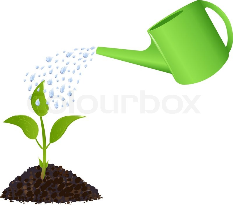 Young plant with watering can and water drops, Isolated On ...