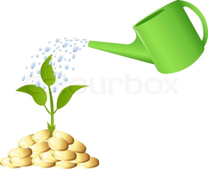 Young Plant With Golden Coins Watering Can And Water