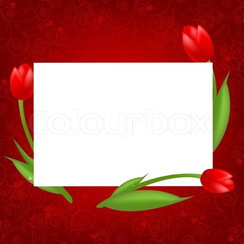 3 Tulips With Blank Valentines Day Card Vector Illustration