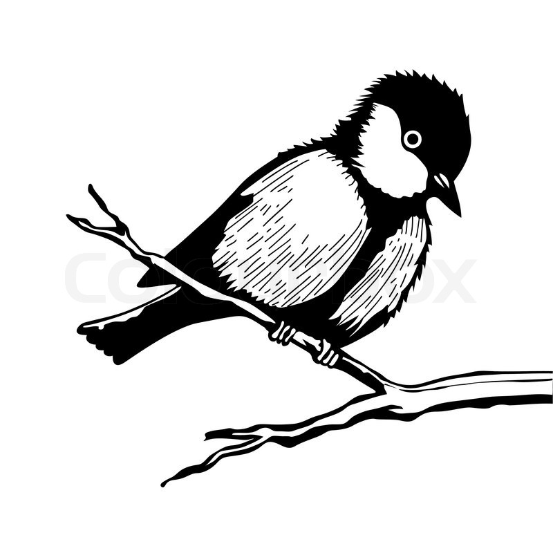 Stock vector of 'Bird on branch silhouette on white background, vector illustration'