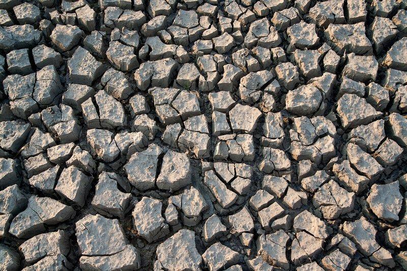 Shrinkage cracks - very arid land, stock photo