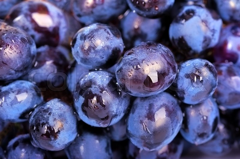 Bunch of grapes for backgrounds or textures | Stock Photo ...