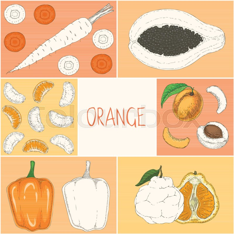 Square Coloring Book Page Orange Color Fruits And Vegetables Hand Drawn Illustration