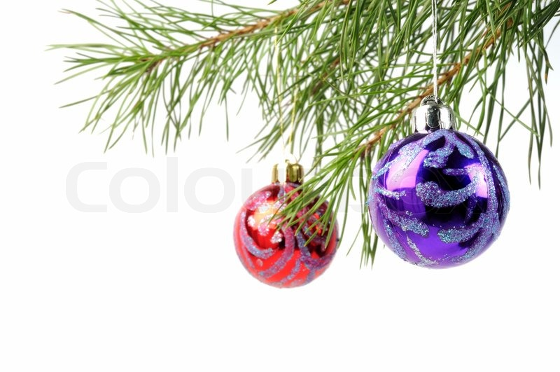 christmas tree branches with beauty balls on a white background stock photo colourbox - Christmas Tree Branches