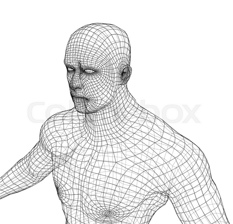 Wire frame athlete body on white background. Vector rendering of 3d ...