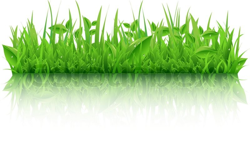 green grass with leafs isolated on stock vector colourbox green grass with leafs isolated on