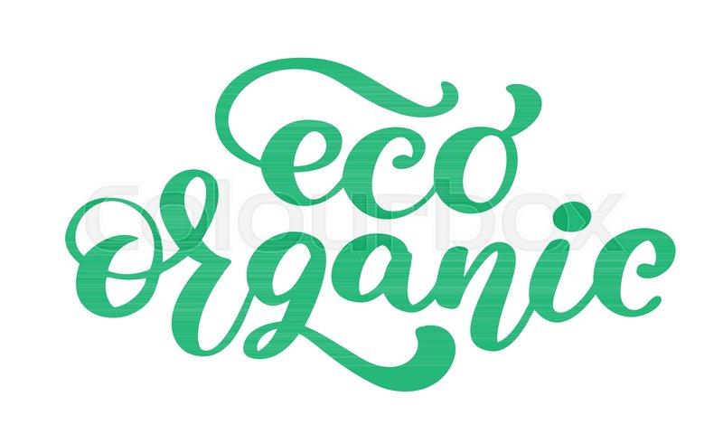 Eco Organic icon hand drawn     | Stock vector | Colourbox