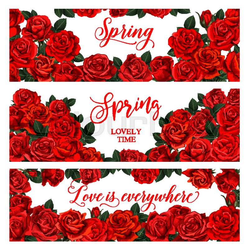 Springtime seasonal banners of roses flowers bouquets frame for ...