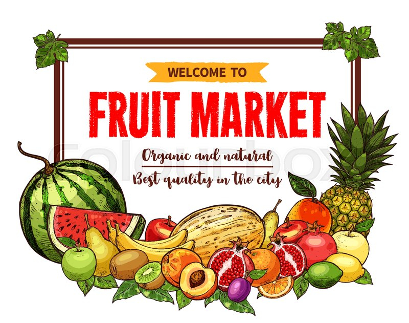 fruit market welcoming banner with stock vector
