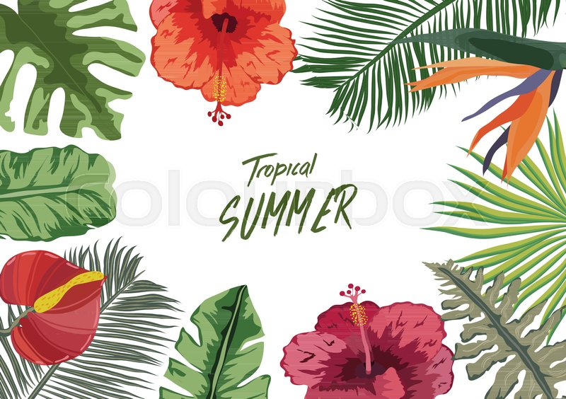 Summer Tropical Background With Stock Vector Colourbox Download high quality tropical clip art from our collection of 41,940,205 clip art graphics. summer tropical background with