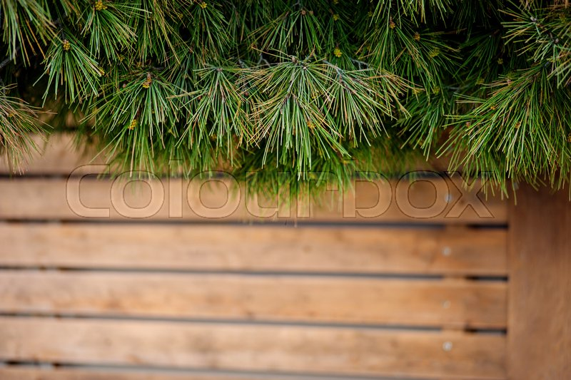 Christmas wooden background with fir tree. Wooden background. Christmas Wreath with Rustic Wood Background. Christmas design - Merry Christmas. Christmas ornaments, stock photo