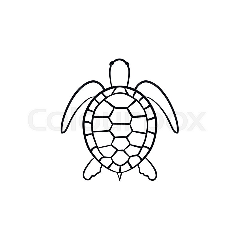 turtle outline doodle icon stock vector