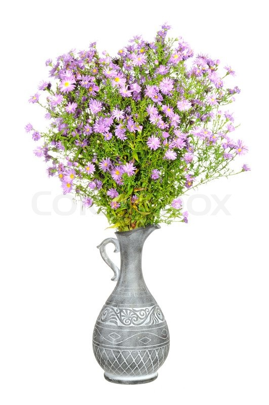 Bouquet Of Pink New York Aster Flowers Stock Photo Colourbox