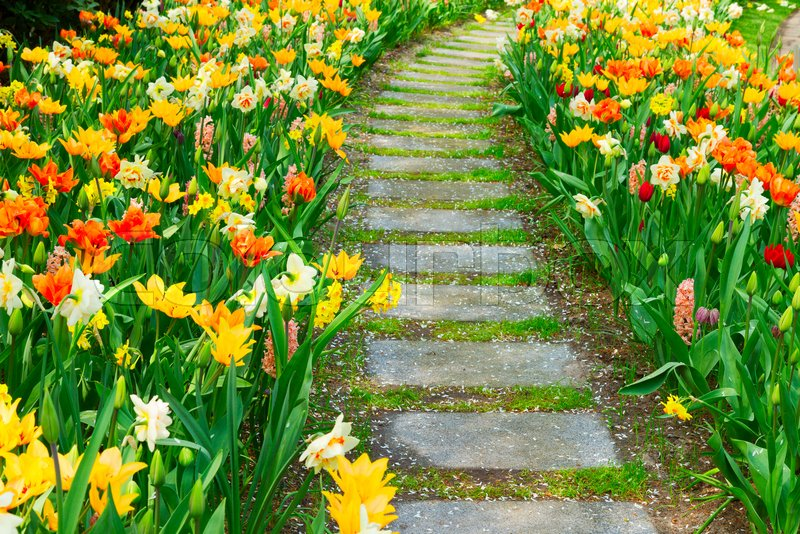 Step Stones Close Up, Path In Fresh Spring Flower Garden | Stock Photo |  Colourbox