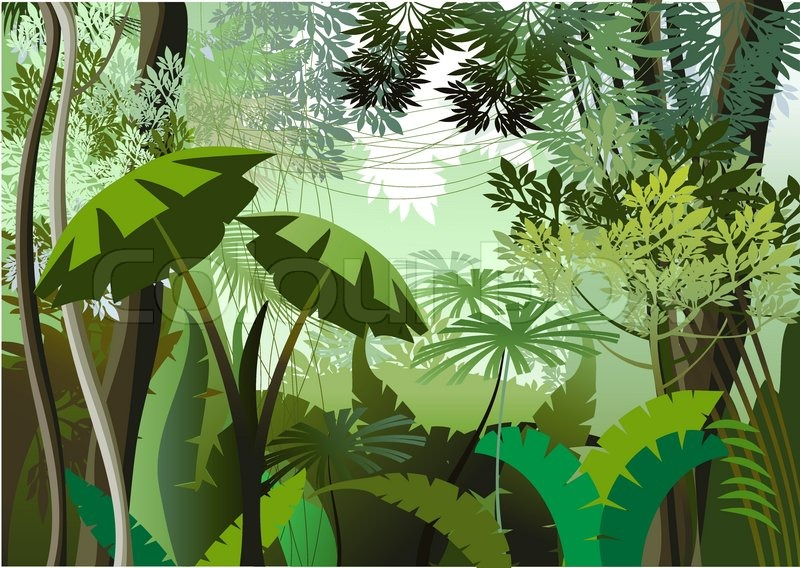 Overgrown plants in the jungle | Stock Vector | Colourbox