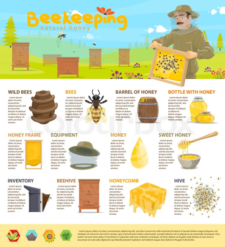 Beekeeping And Honey Production Or