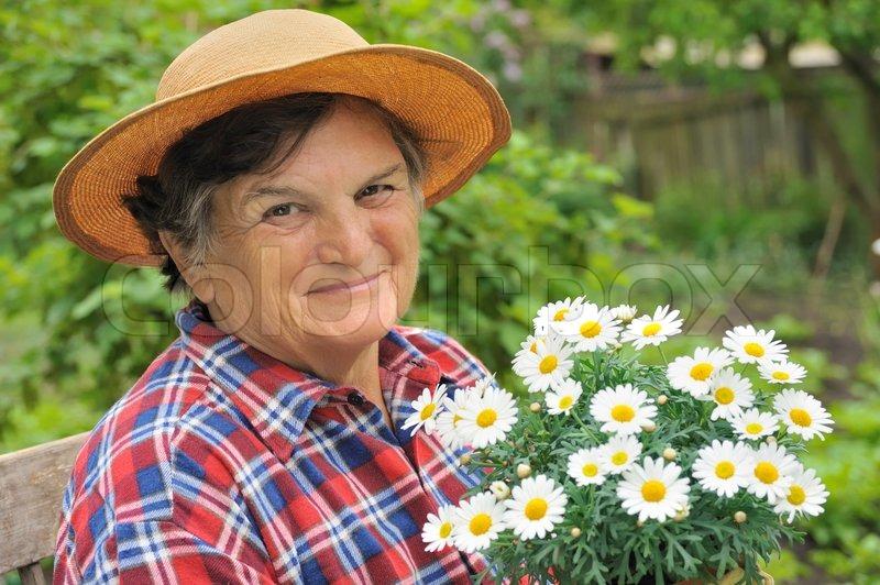 182359a1 Senior woman gardening - holding Daisy | Stock image | Colourbox