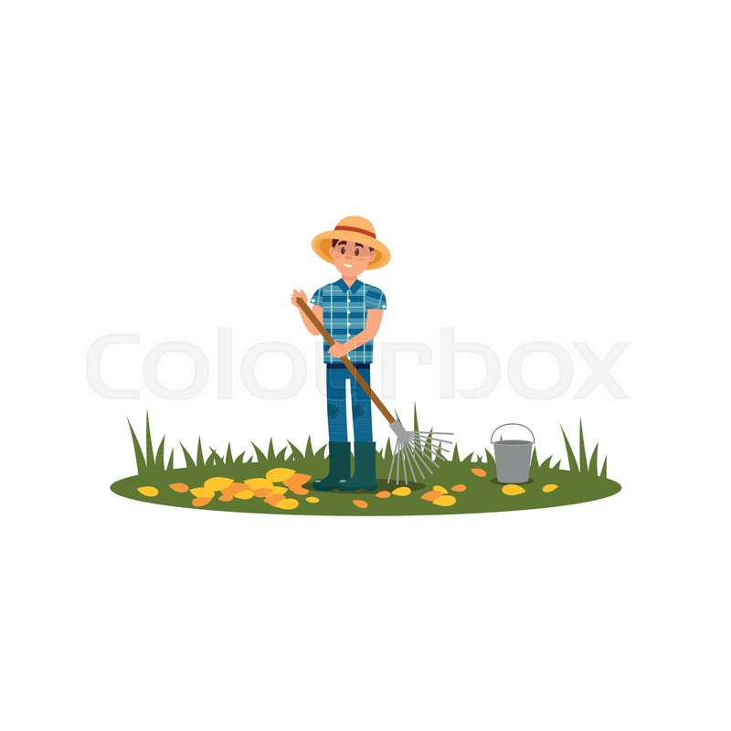 a63e23cf11eee7 Man raking autumn leaves on green ... | Stock vector | Colourbox