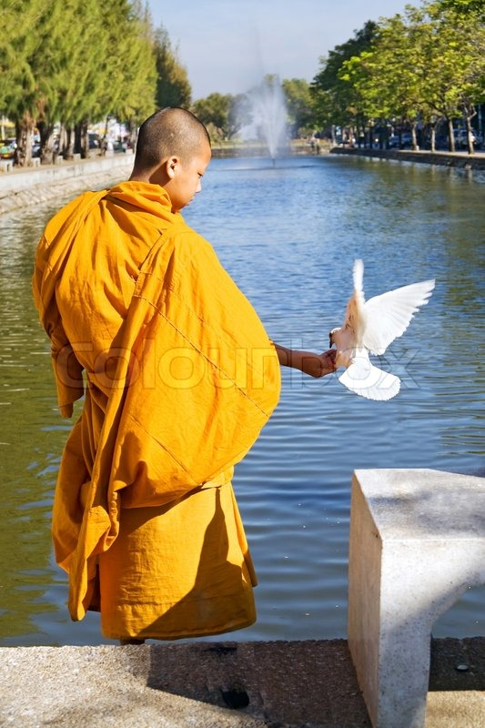 white pigeon buddhist personals 100% free online dating in white pigeon 1,500,000 daily active members.