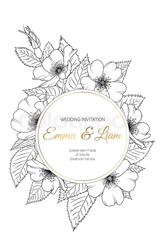 Wedding Event Invitation Card Stock Vector Colourbox